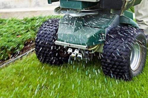 Luigi's South Florida Fertilizer Programs