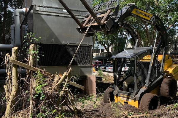 Luigi's South Florida Hurricane Cleanup
