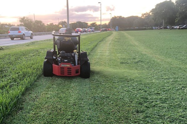 Luigi's South Florida Lawn and Landscape Care